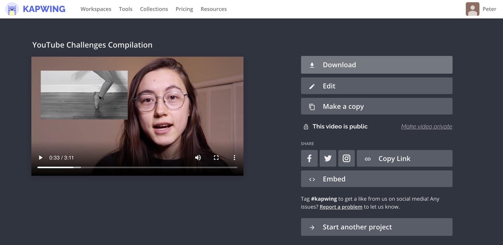 Ein Screenshot der Kapwing-Downloadseite.