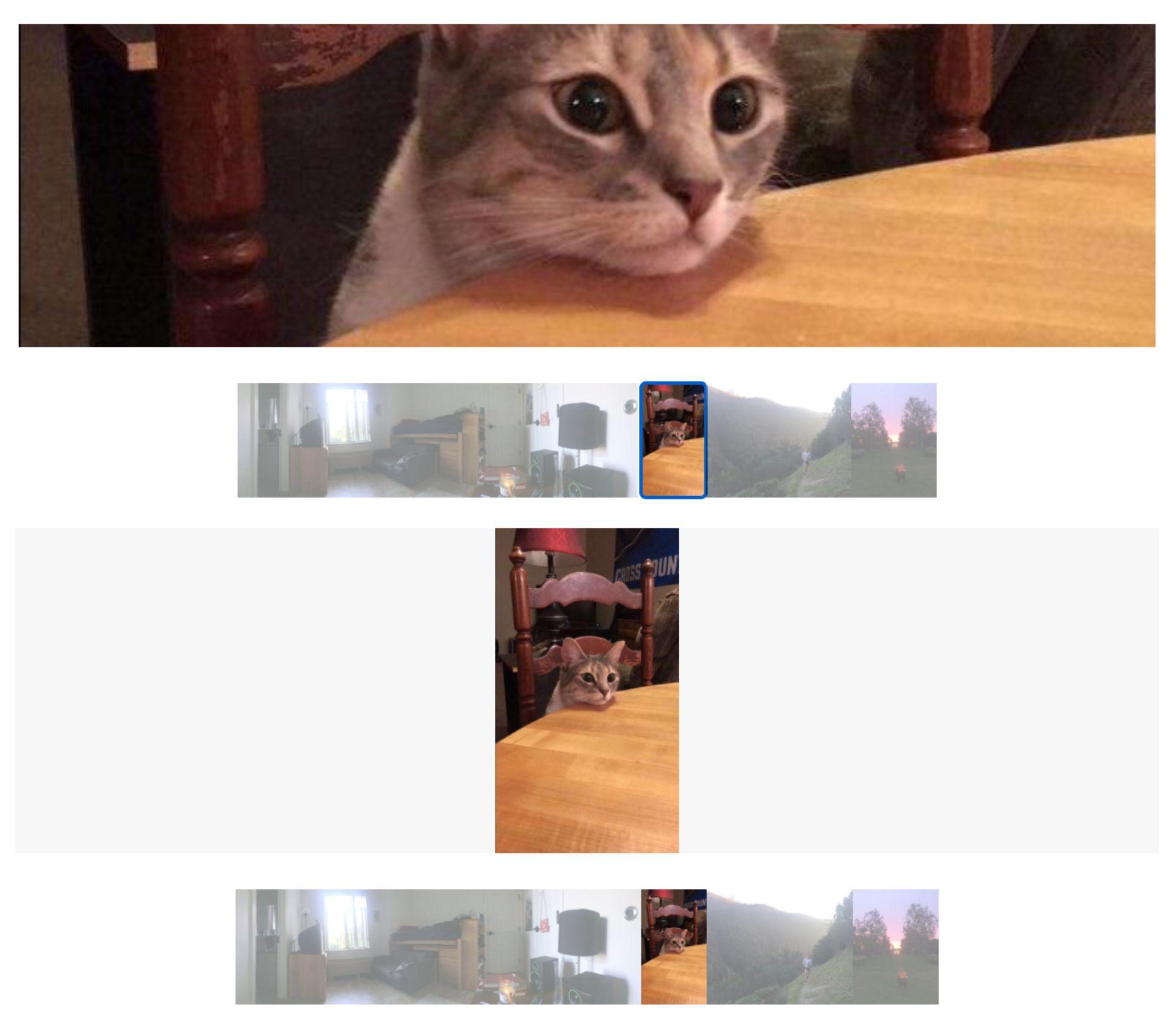 Screenshots zeigen, wie Bilder zugeschnitten oder verkleinert werden, wenn sie im Diashow-Block von Squarespace angezeigt werden.