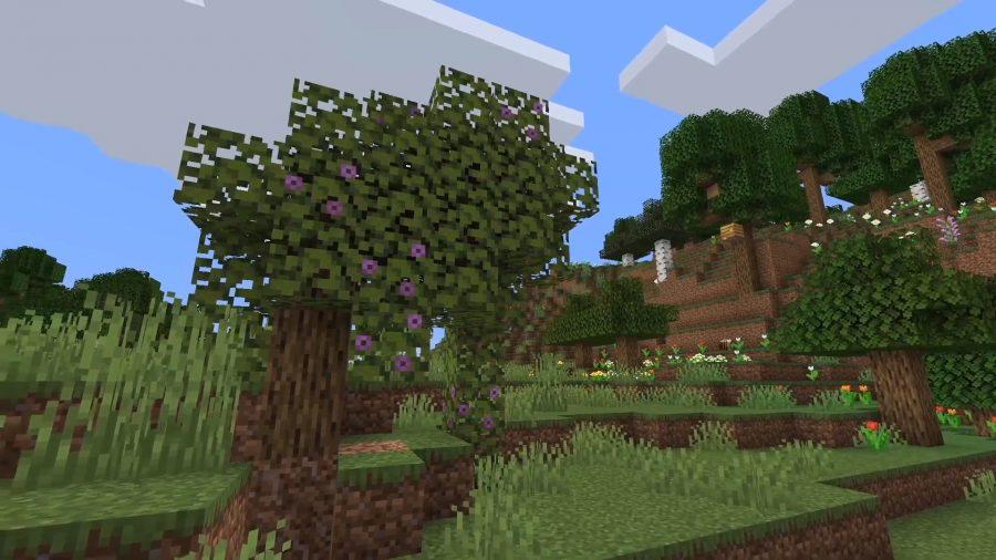 Die Azaleenbäume führen zu den üppigen Höhlen unten. Sie haben charakteristische lila Blüten auf ihren Blättern.